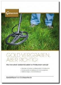 Gold vergraben Cover 3D